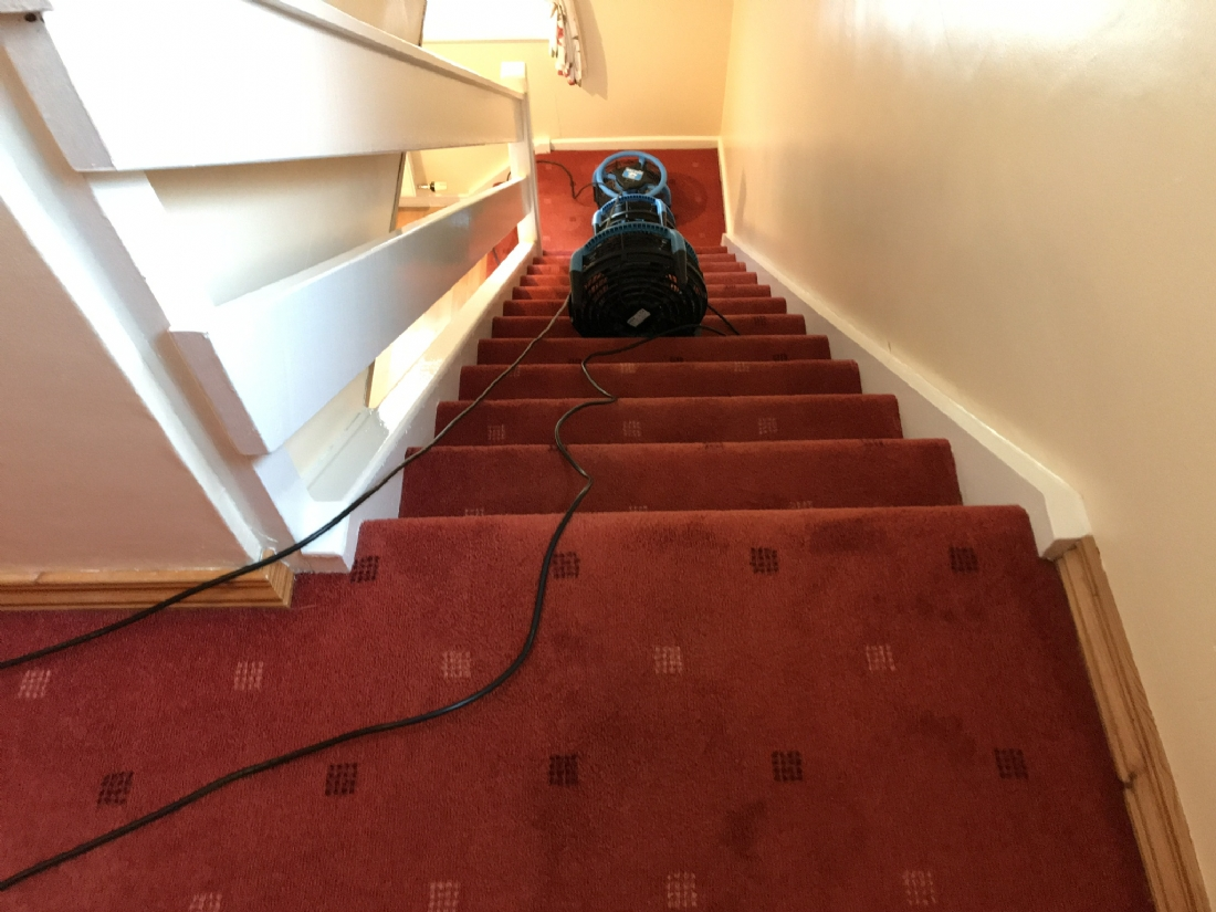 Stairs and landing carpet Newtownabbey