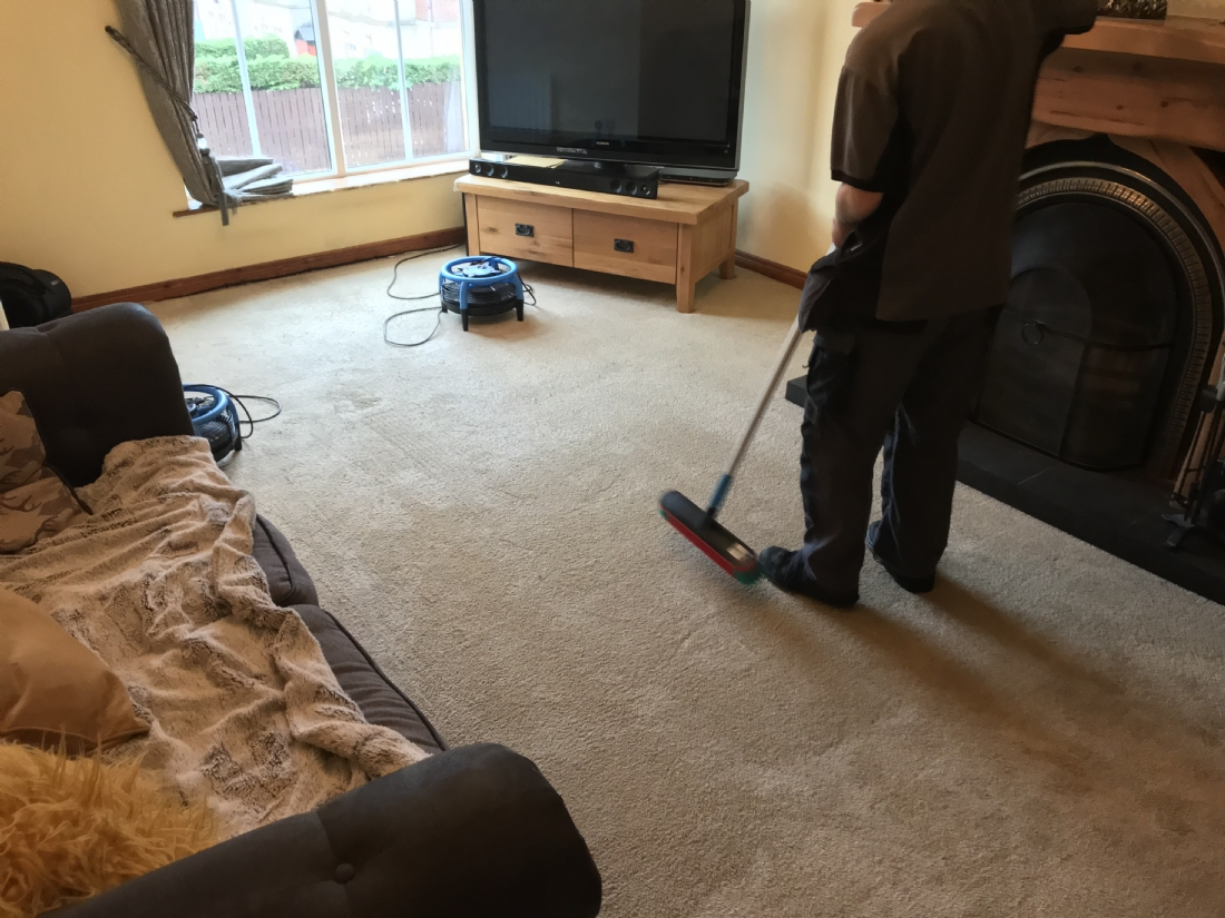 Carpet Cleaning Whiteabbey