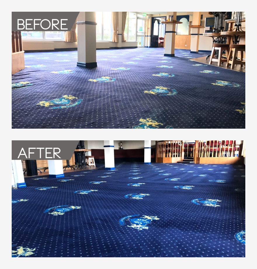 Carpet Cleaning Whitehead | Carpet