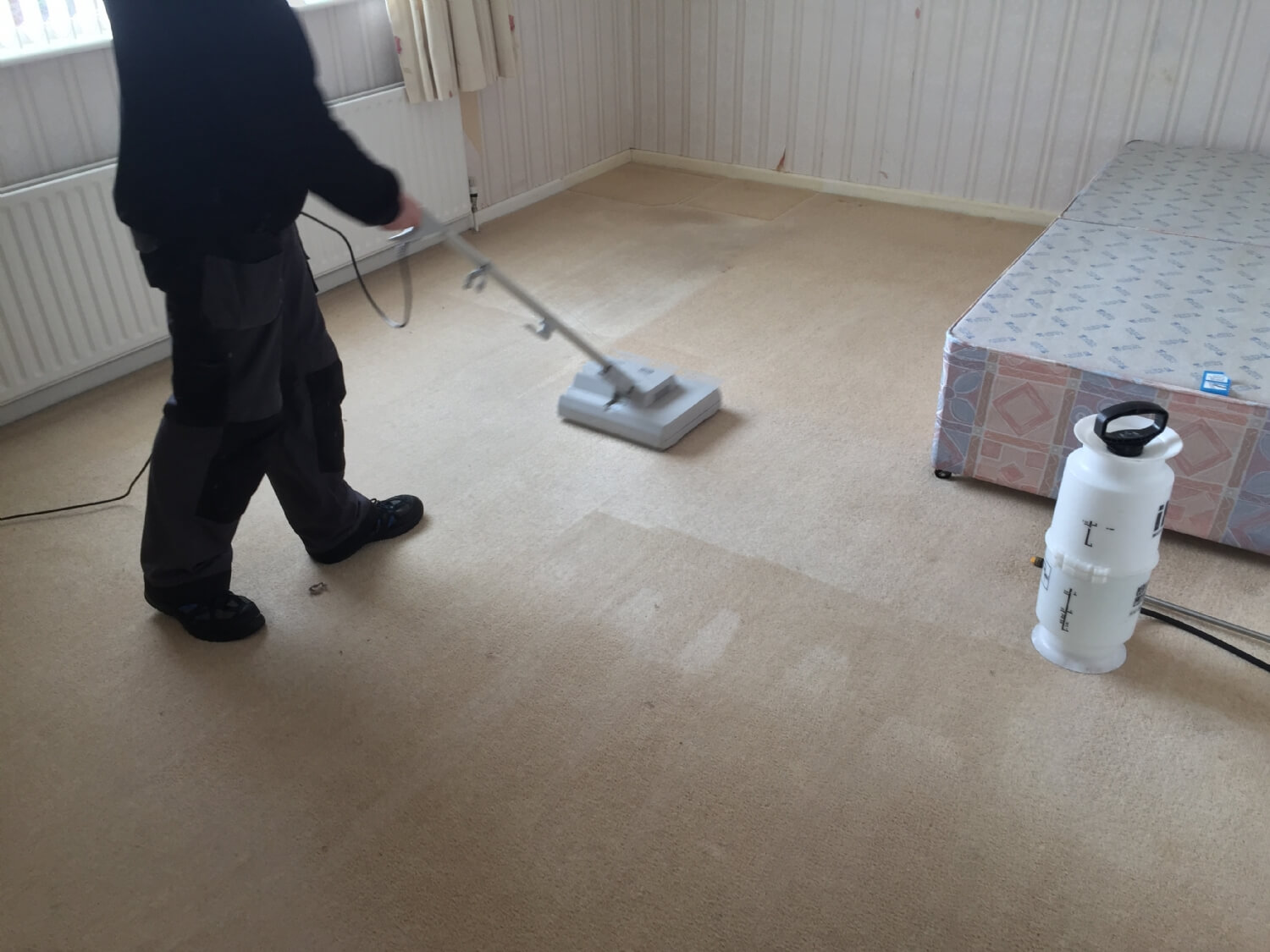Carpet cleaning Greenisland